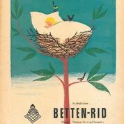 Bettenrid2